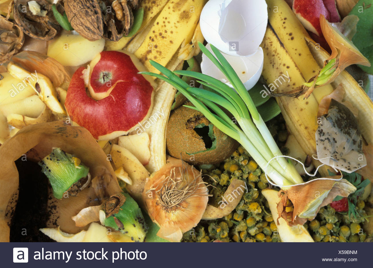 Organic kitchen waste, biodegradable - Stock Image