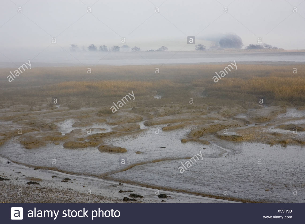 Country Suffolk English England Stock Photos & Country Suffolk ...