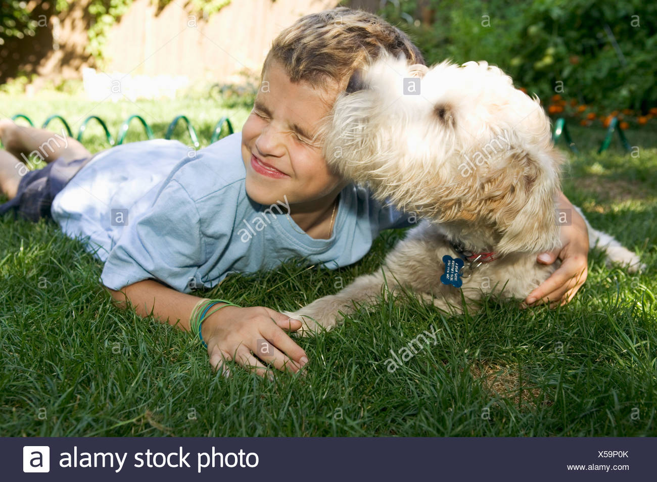Boy and dog lying down together outdoors - Stock Image