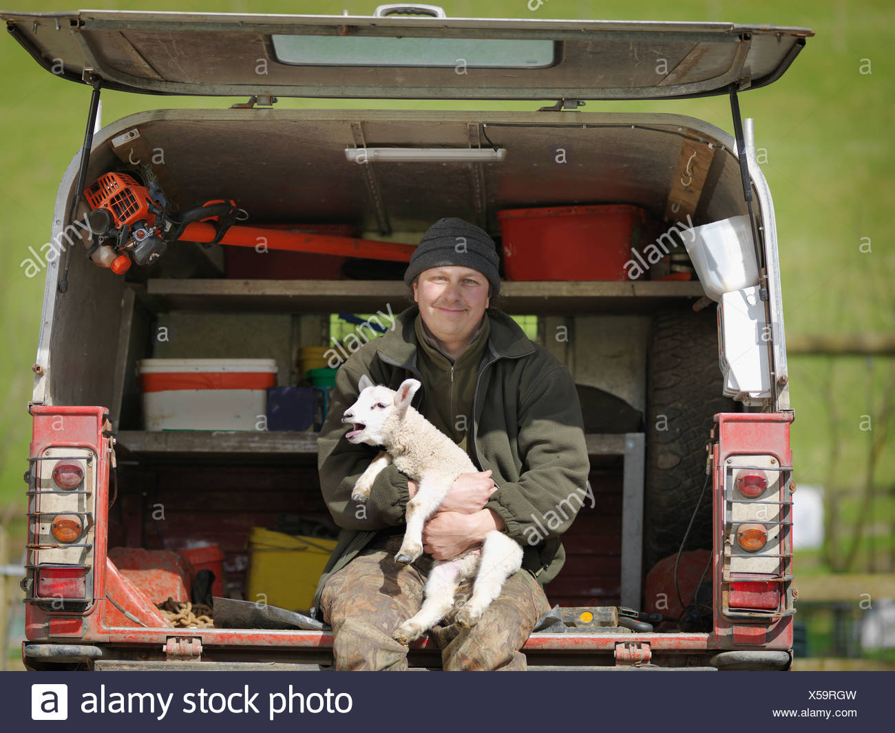 Man sitting in van boot holding lamb - Stock Image