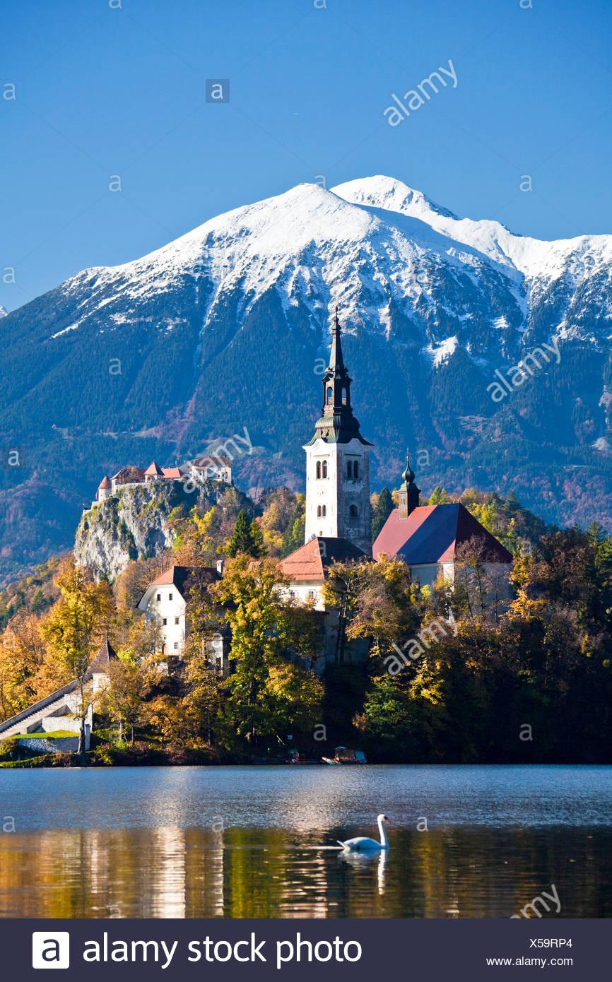 Slovenia, Europe, Bled, lake, autumn, church, mountains - Stock Image