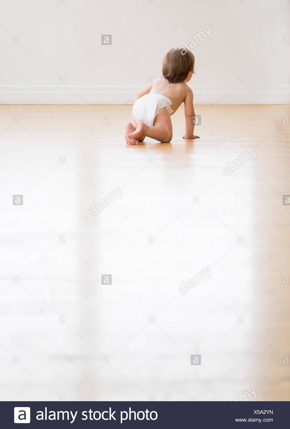 Rear view of baby girl (18-23 months) on hardwood floor - Stock Image