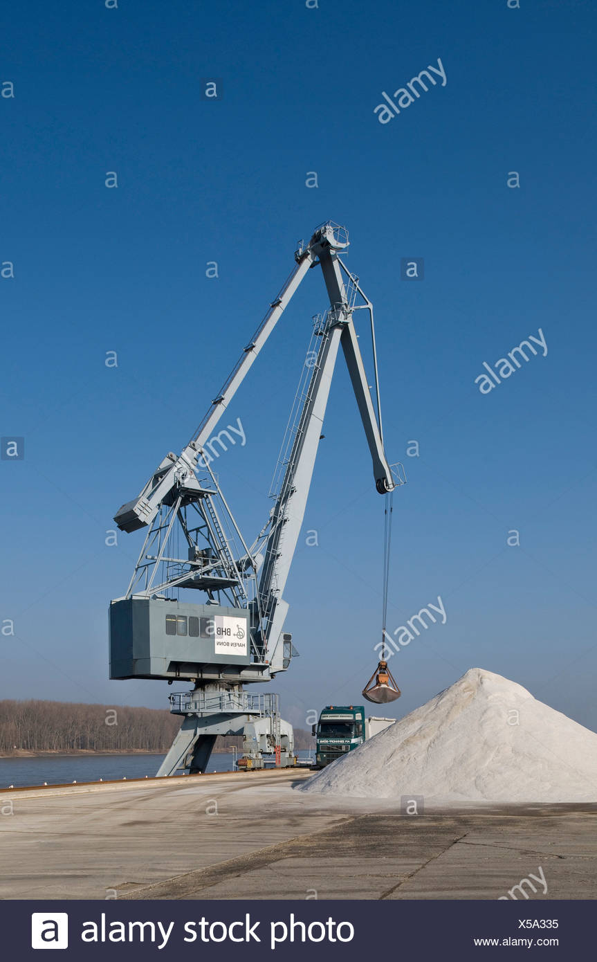 Container Terminal Bonn, conventional cargo handling, port crane loading a dump truck with salt in front of the Rhine River, No - Stock Image