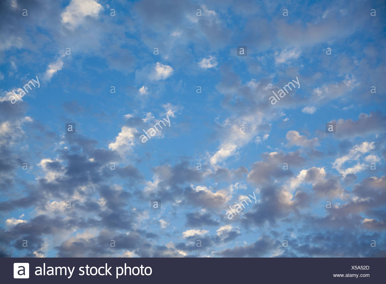 Seattle Washington USA Wispy clouds in blue sky nearing dusk Seattle USA Stock Photo