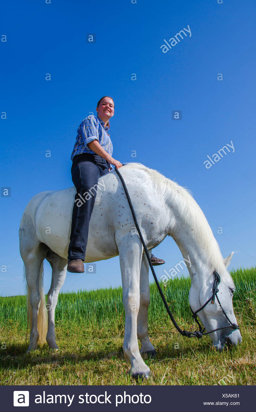 Junge Frau sitzt ohne Sattal auf einem weissem Pferd Stock Photo