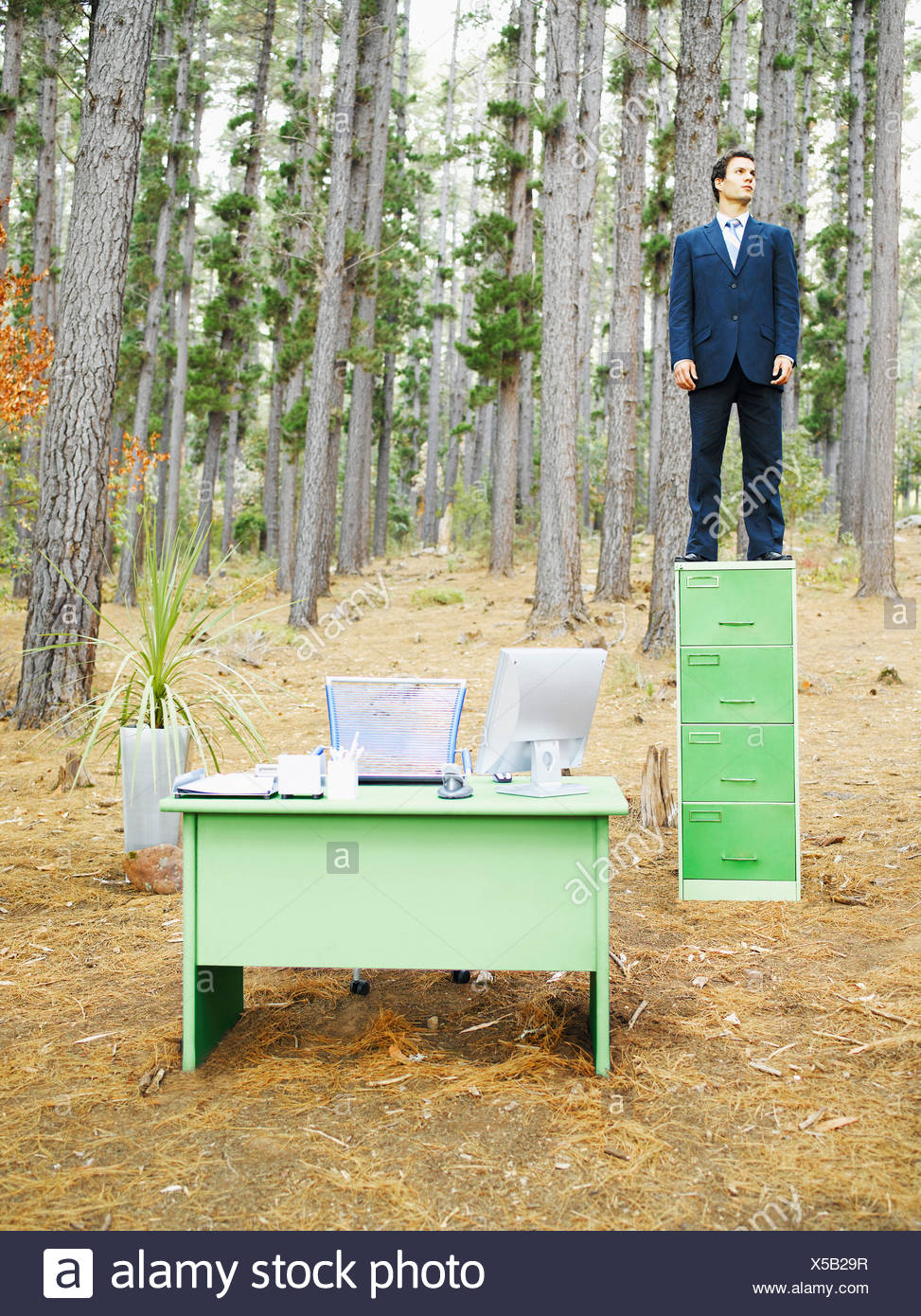 A businessman on his filing cabinet in the woods - Stock Image
