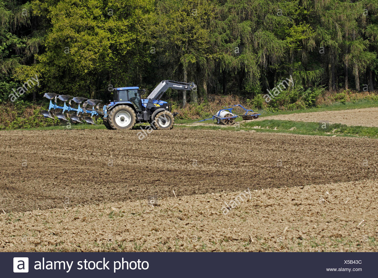 Farming, tractor in a field in the Teckenburger country at Holperdorp, North Rhine-Westphalia, Germany - Stock Image