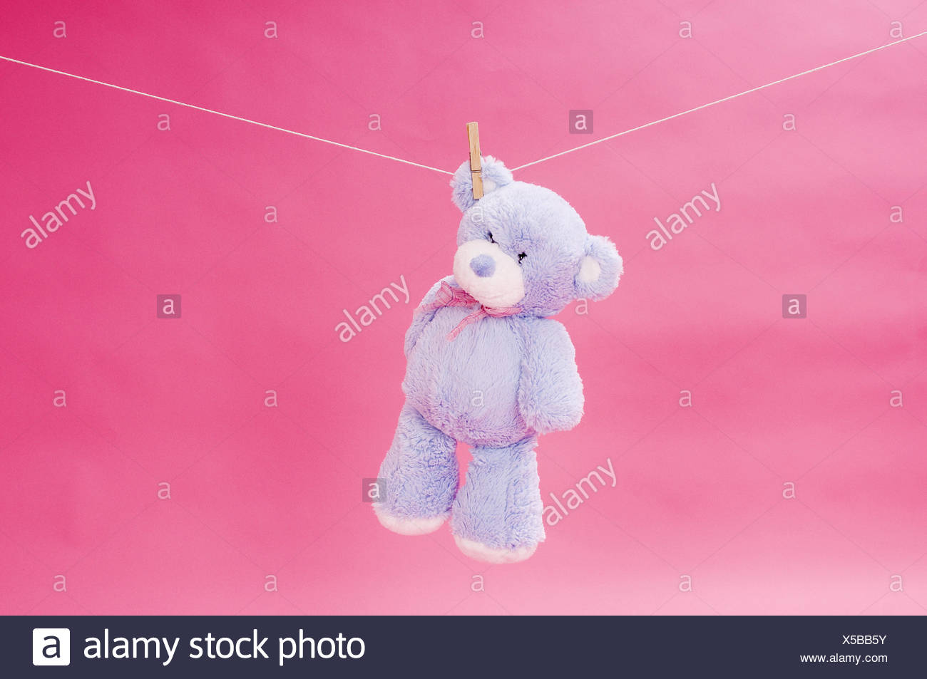 Substance bear, clothesline, hang, pink background, - Stock Image
