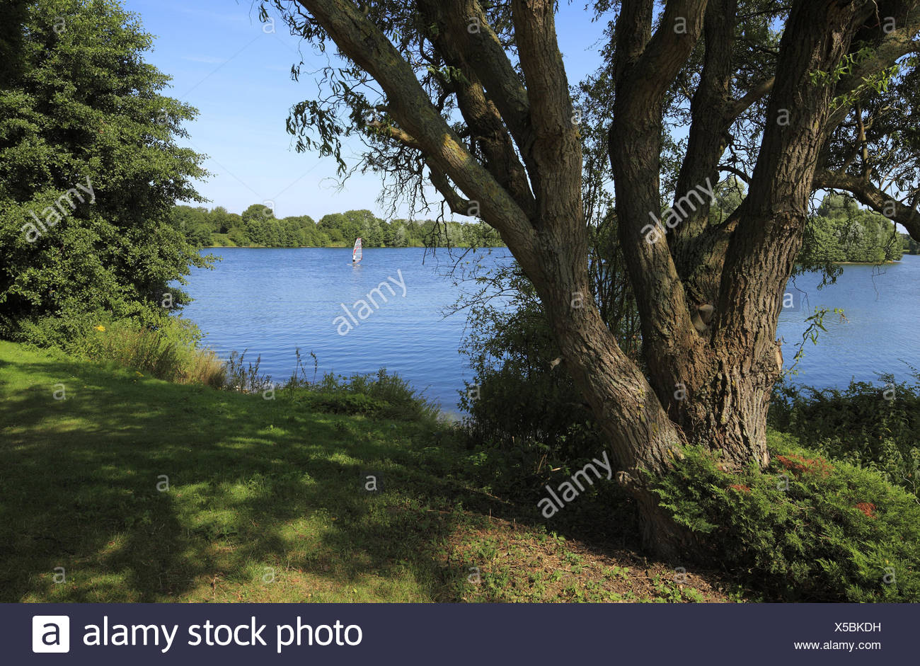 Elfrather lake in Krefeld-Ürdingen, North Rhine-Westphalia, Germany, Stock Photo