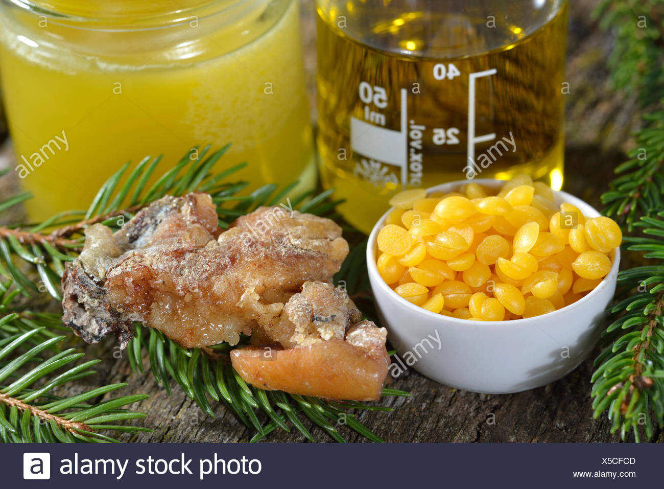 Production spruce resin ointment / (Picea abies) - Stock Image