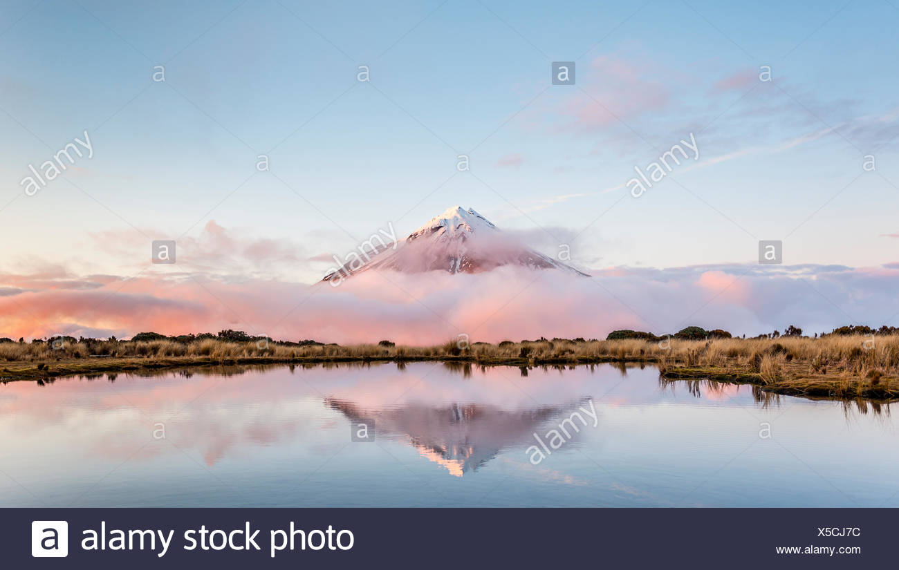 Reflection in Pouakai Tarn, stratovolcano Mount Taranaki or Mount Egmont at sunset, Egmont National Park, Taranaki, North Island - Stock Image
