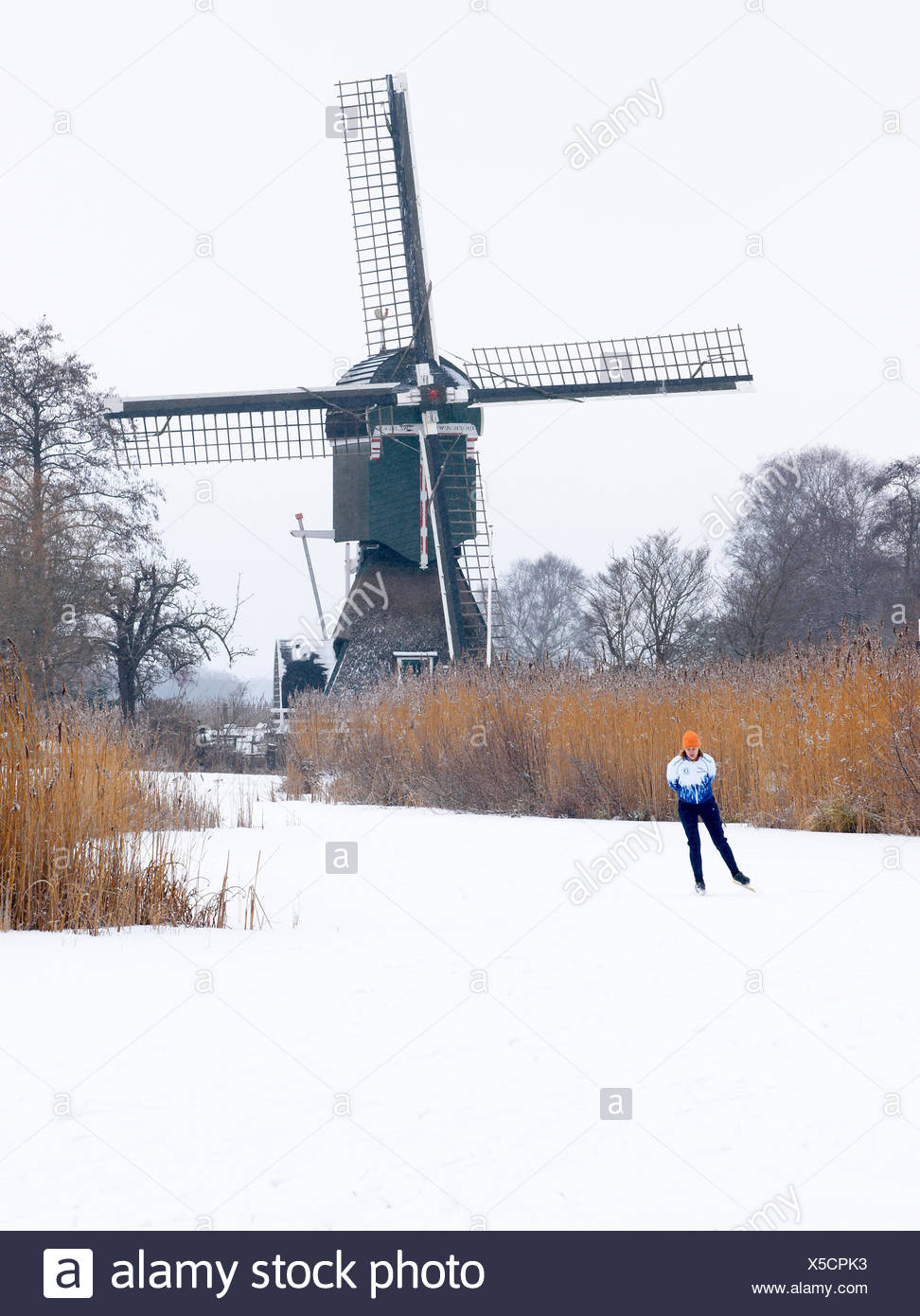Ice skater on frozen canal and Dutch windmill. - Stock Image