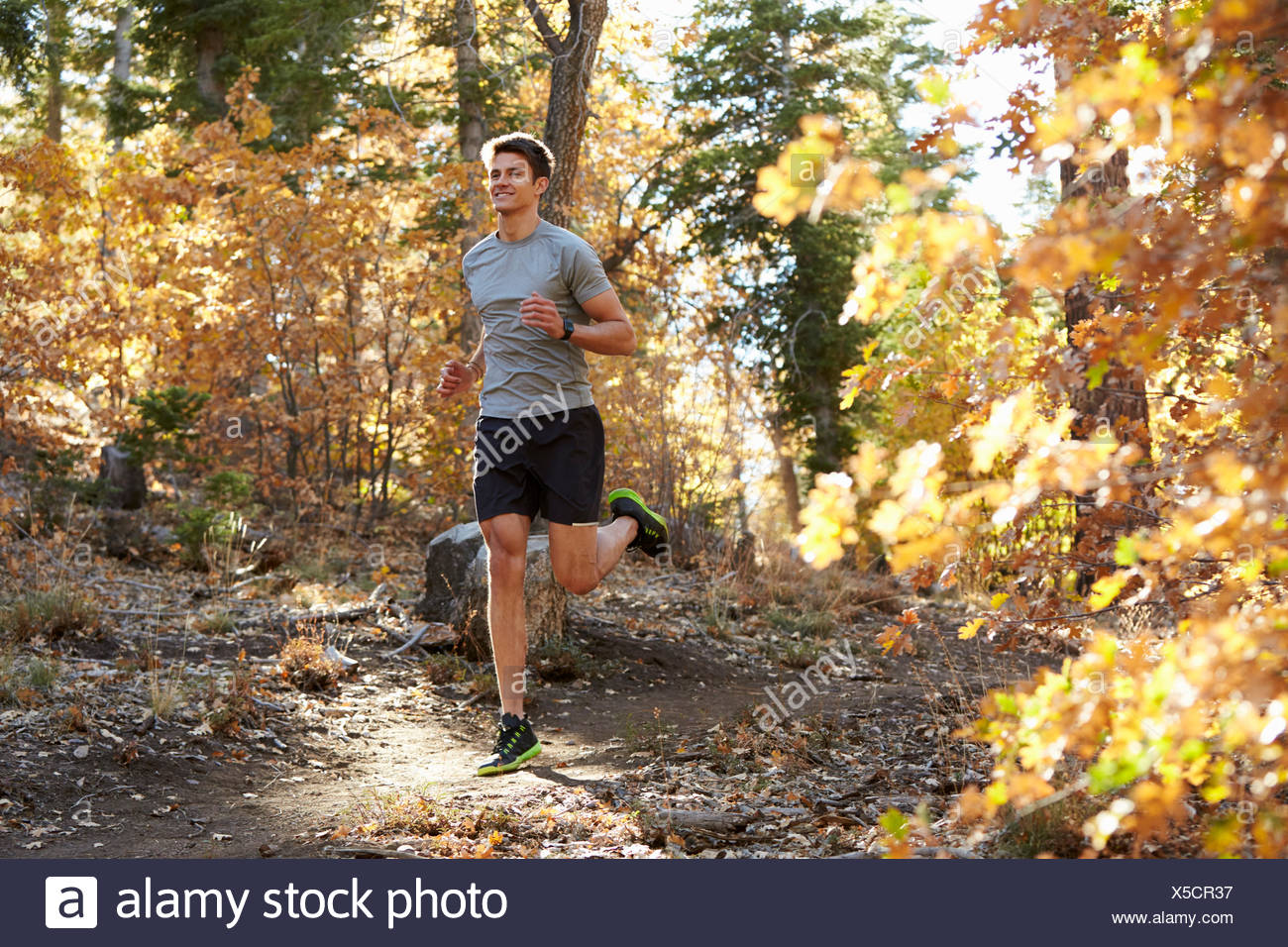 Caucasian man running on a forest trail, closer in - Stock Image