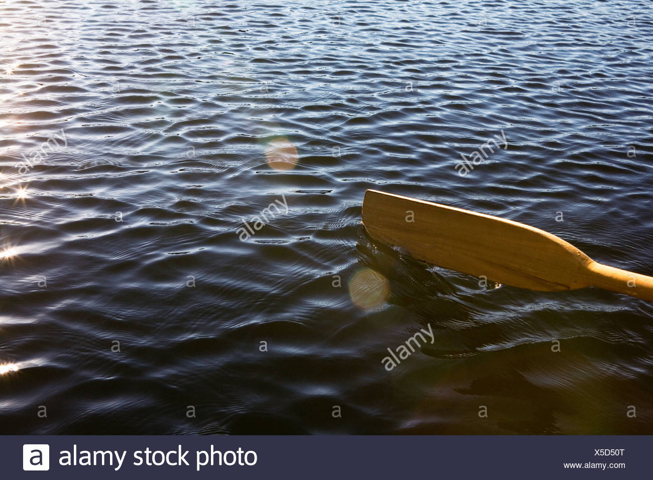 Oar on lake - Stock Image