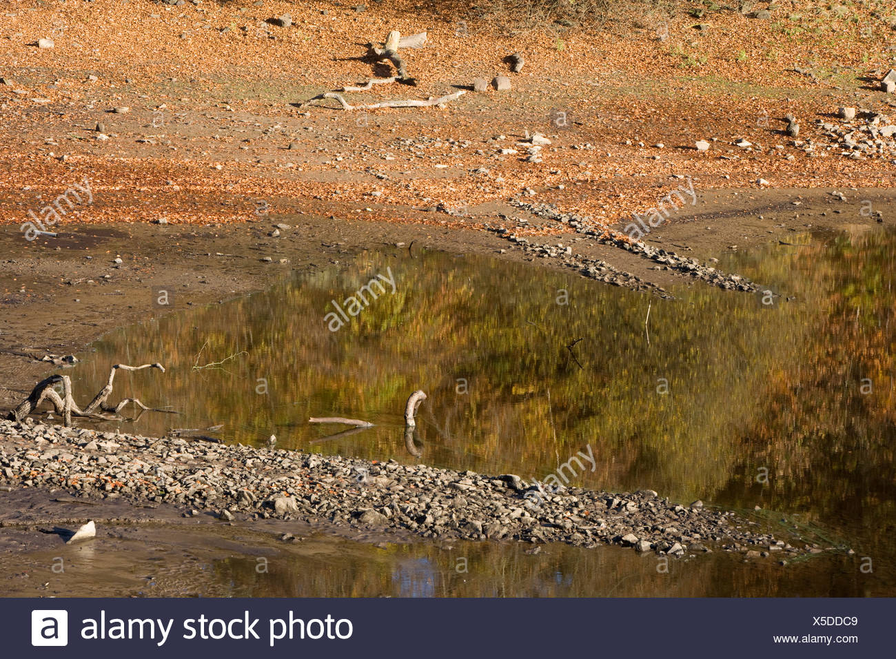Anglezarke Reservoir at a low level due to a lack of rain - Stock Image