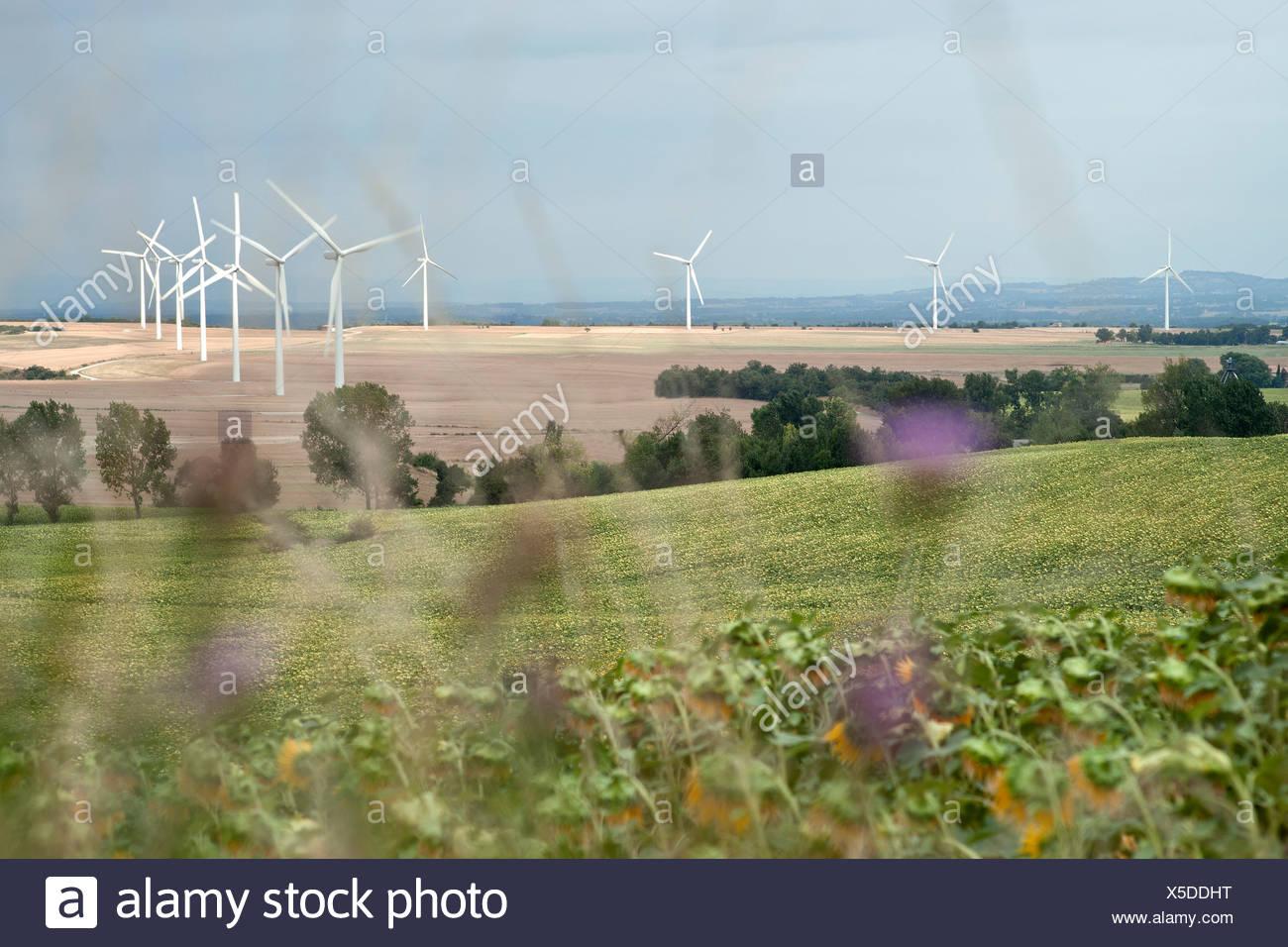 Wind farm landscape - Stock Image