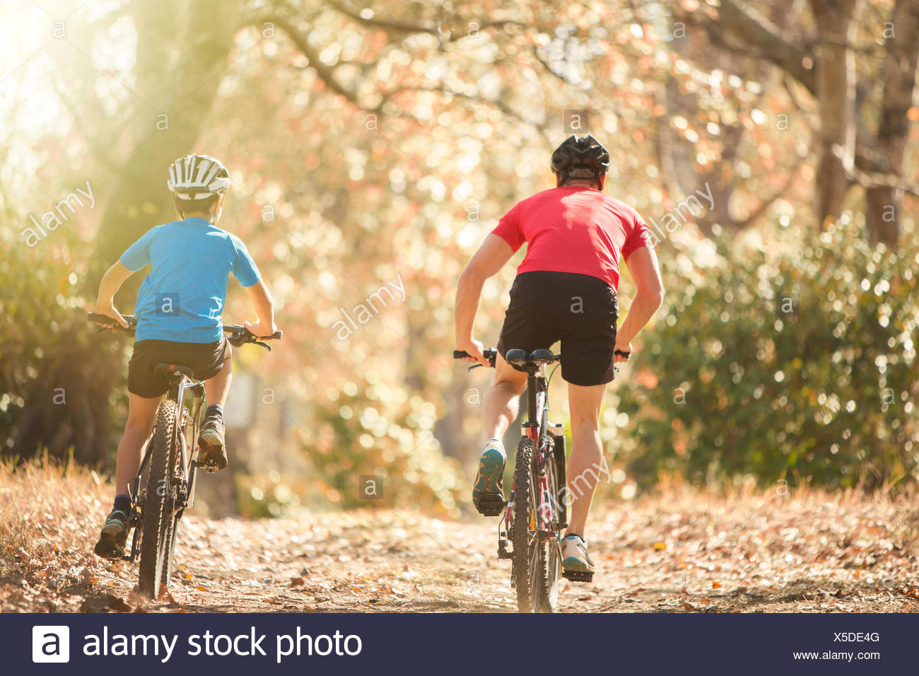 Father and son mountain biking on path in woods - Stock Image