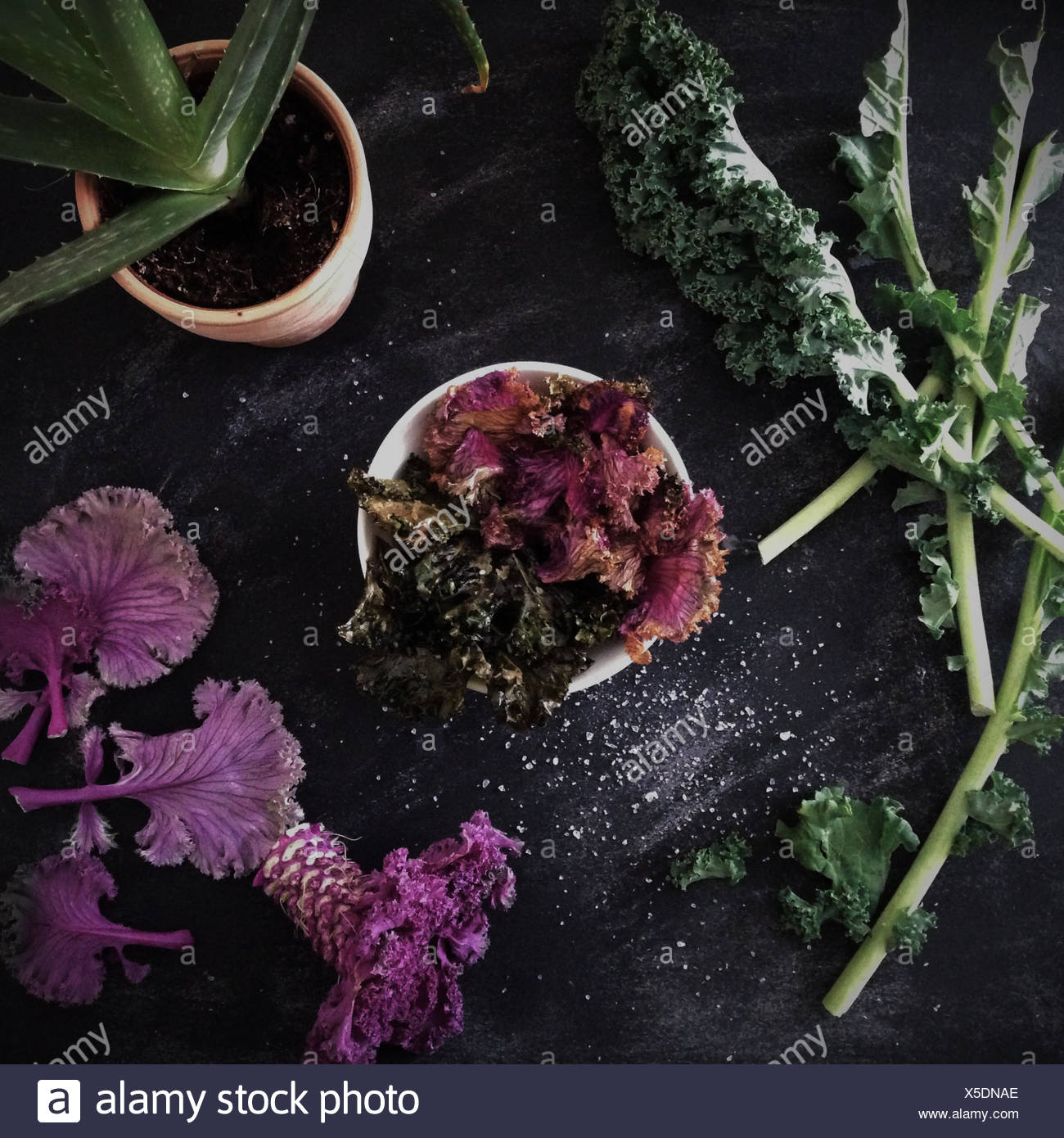 Bowl of salted kale chips with sesame and soy - Stock Image