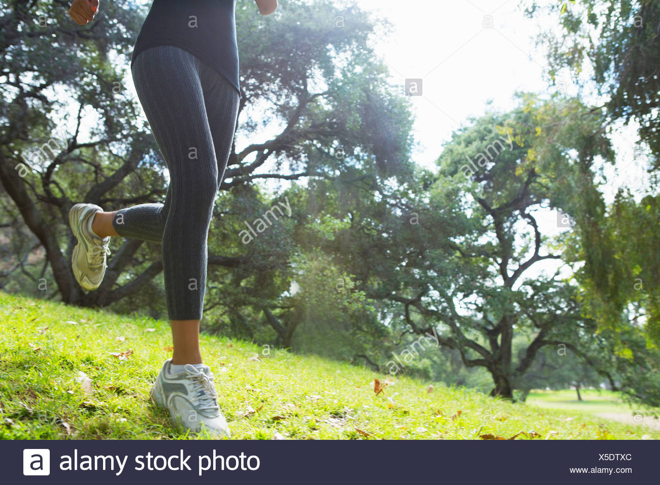 Young woman jogging through park, low section - Stock Image