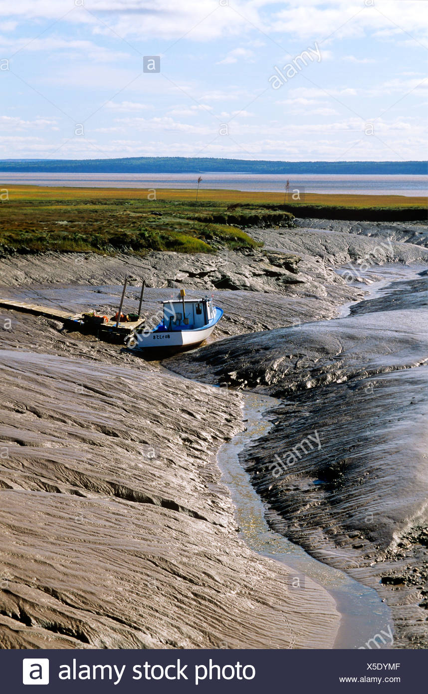 Fishing Boat stranded in mud at Low tide in Bay of Fundy near Wood Point, New Brunswick, Canada. - Stock Image