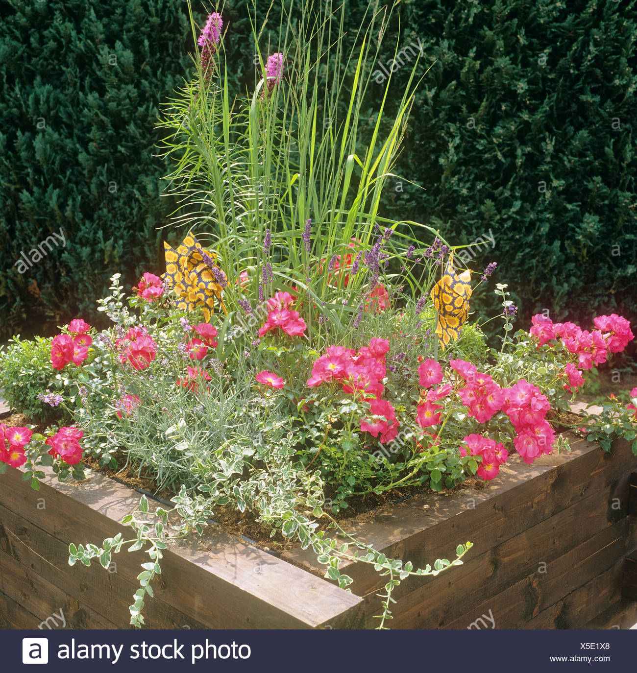 wooden tub with different flowers and plants Stock Photo