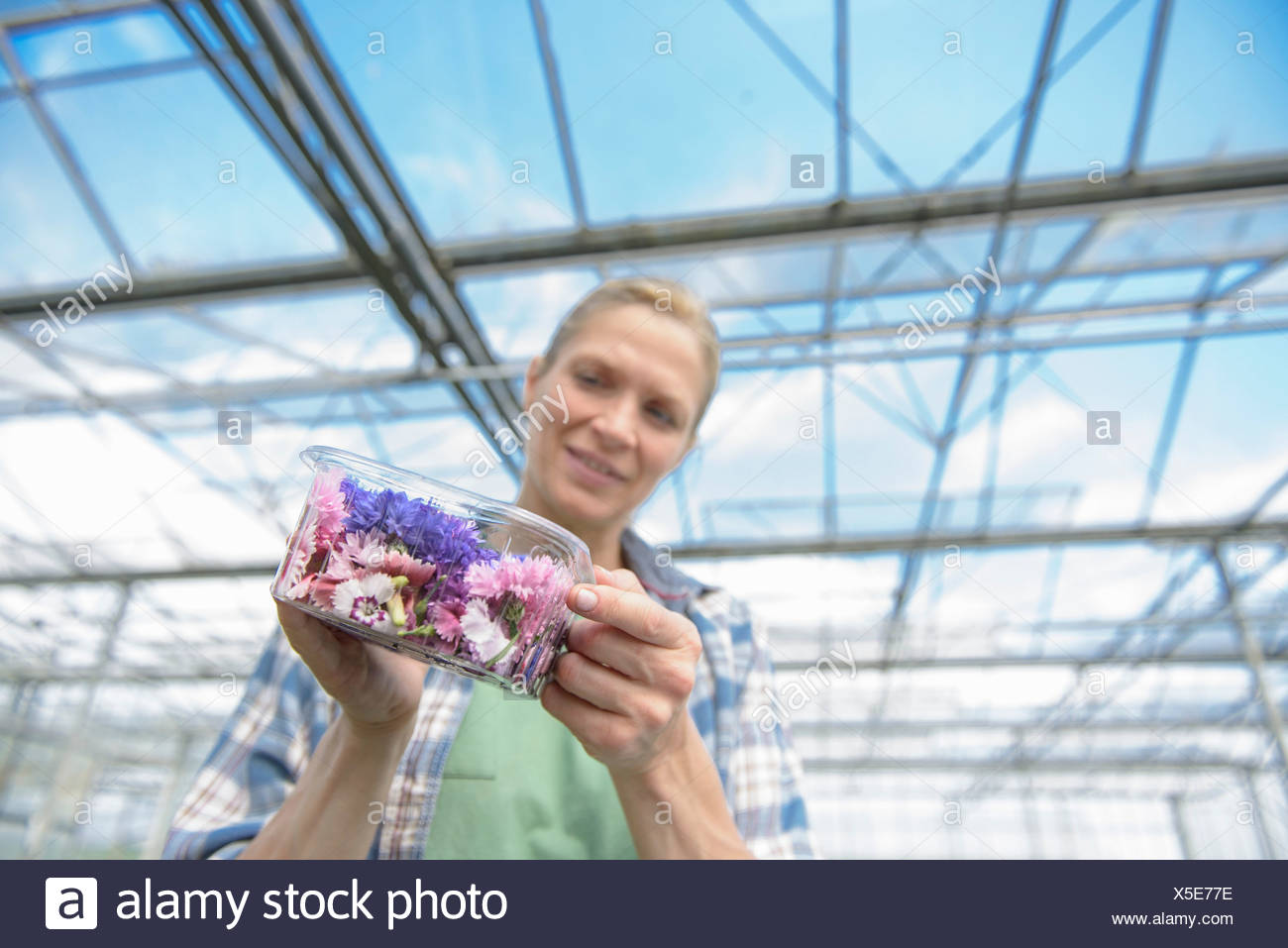 Woman holding box of edible flowers - Stock Image
