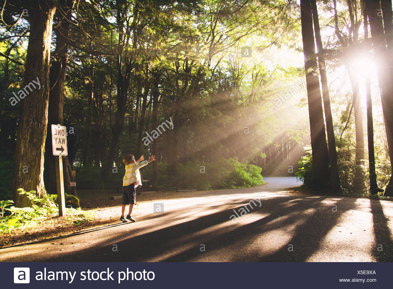 Boy reaching for light - Stock Image