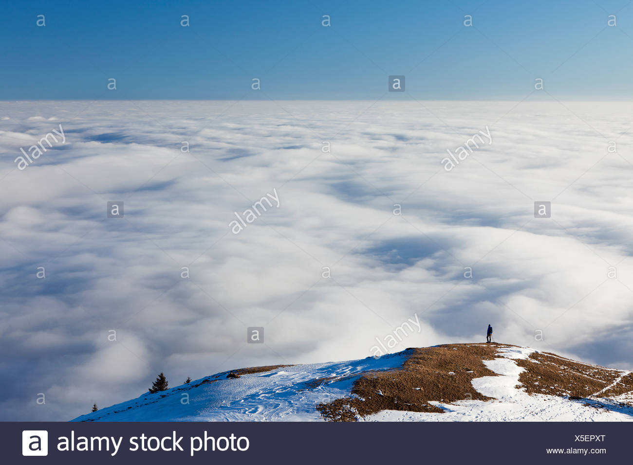 Lonely hiker walking above a sea of fog, low clouds, on Faehnerenspitze mountain in the Appenzell region, Switzerland, Europe Stock Photo