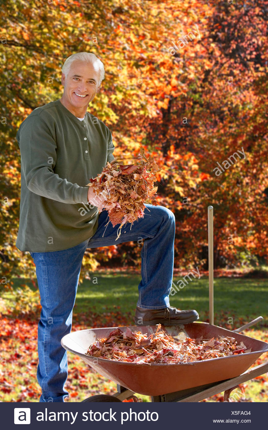 Man doing yard work in autumn - Stock Image