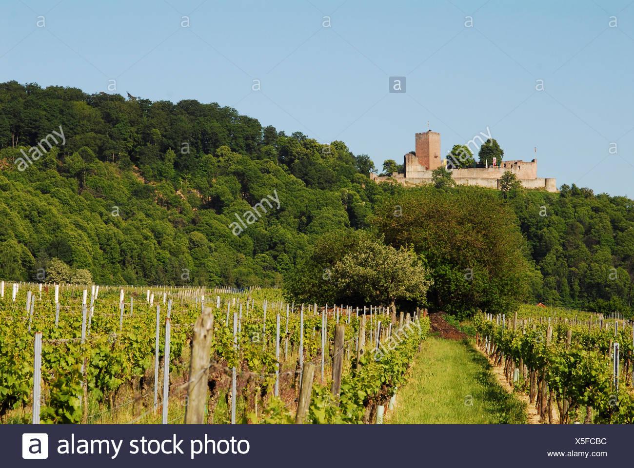 pfalz chateau castle Stock Photo