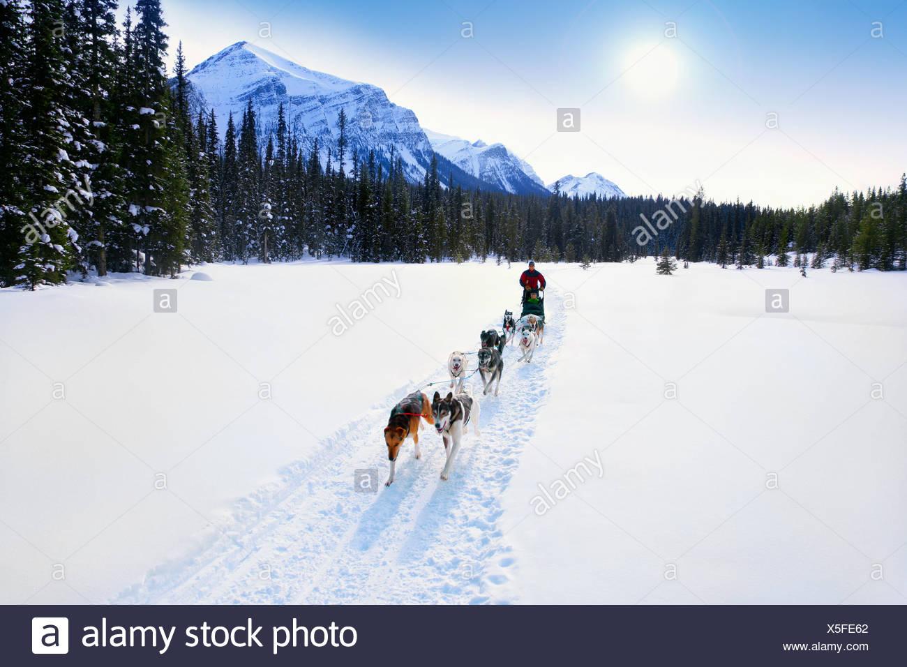 Person having a sleigh ride through the snow - Stock Image