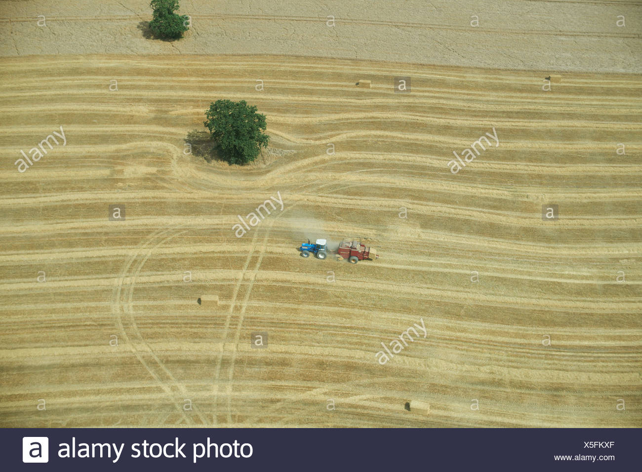Aerial view of tractor in crop field Stock Photo