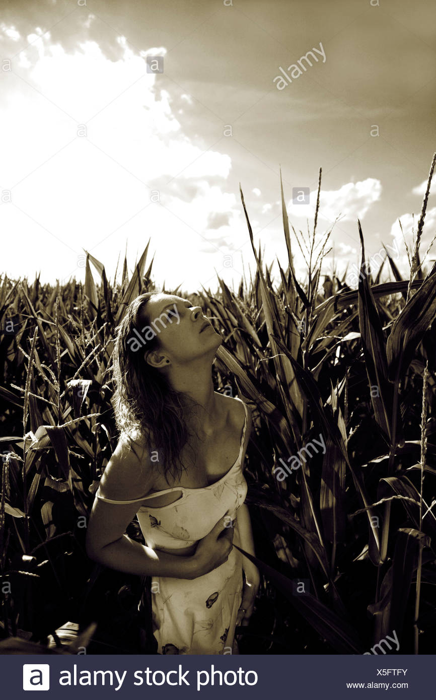 Woman wearing a light summer dress in a corn field, summerly stormy atmosphere - Stock Image