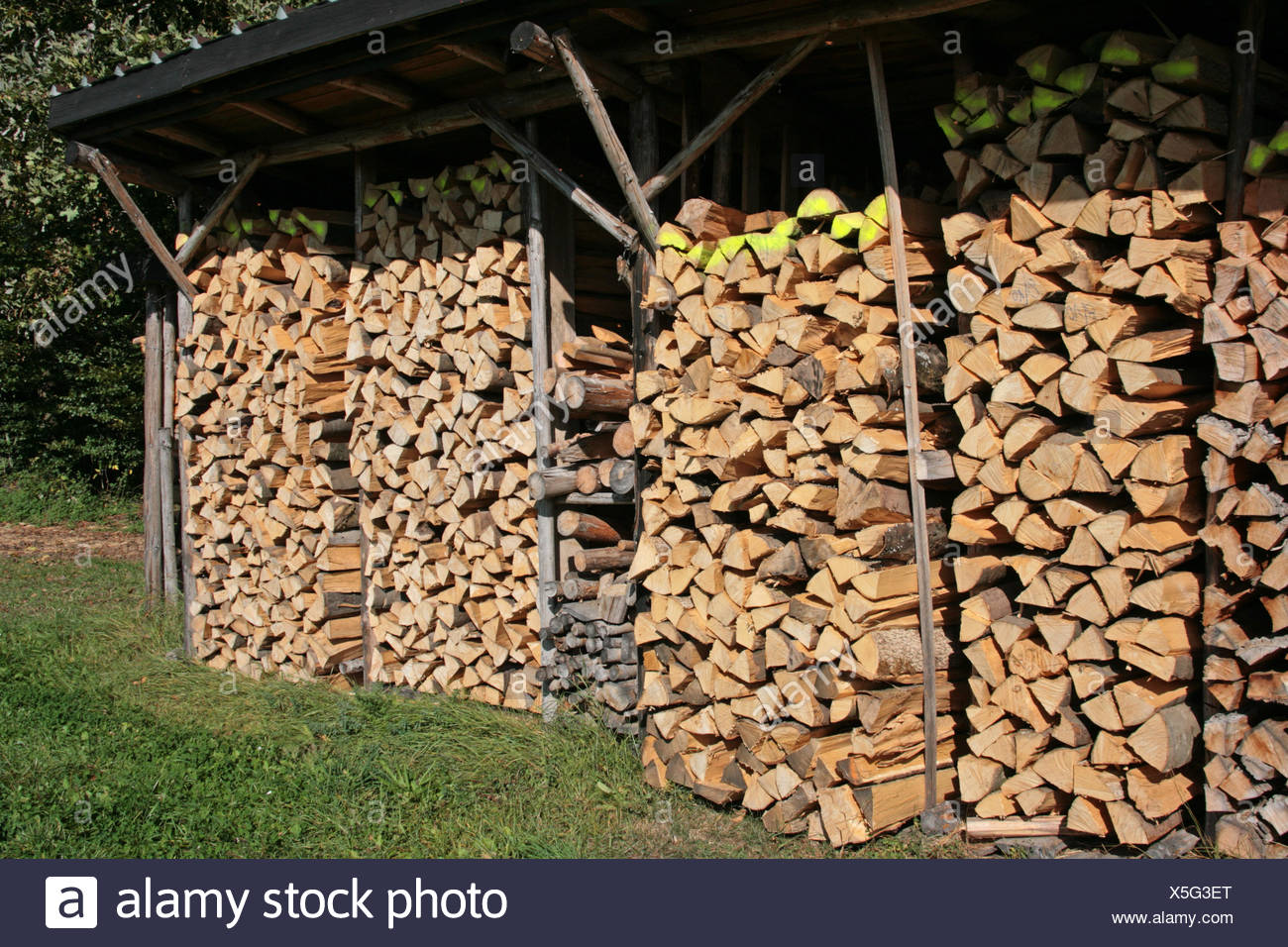 Stock Provision Wood Hovel Store Stack Firewood Stock Provision Wood