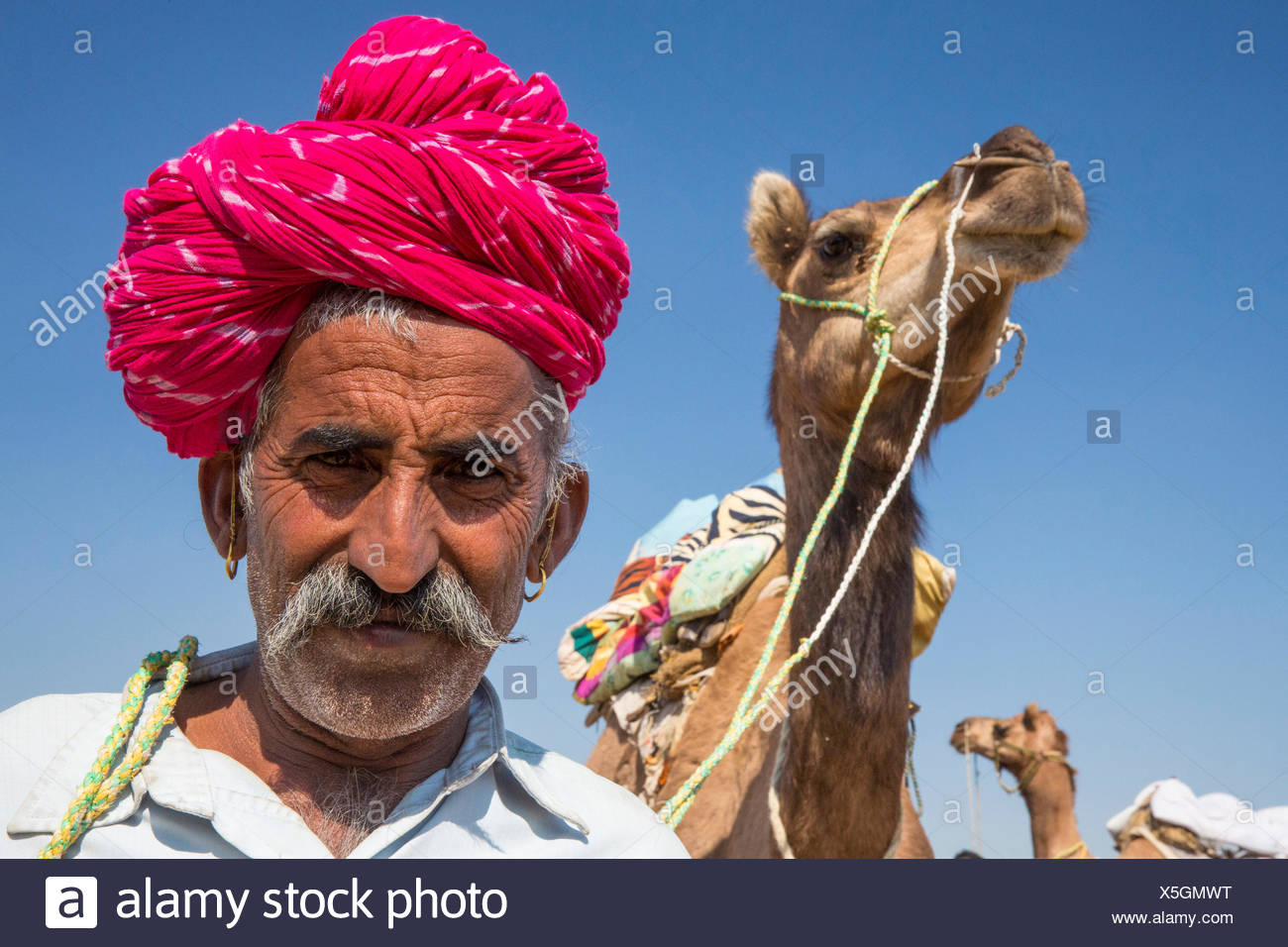 Camel driver, camel, Asia, India, man, turban, camel, dromedary, Rajasthan, - Stock Image