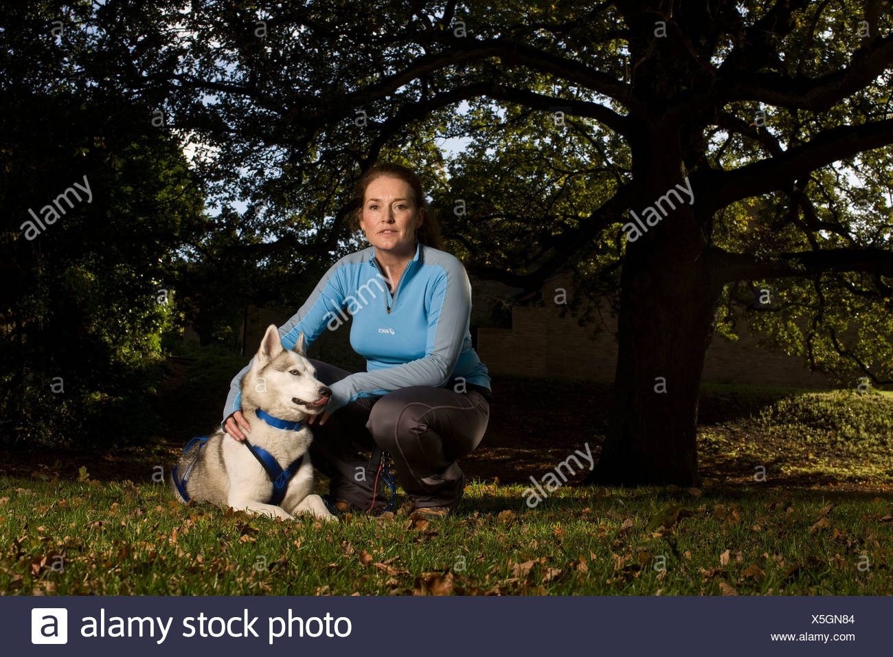 Woman with husky dog in park portrait - Stock Image