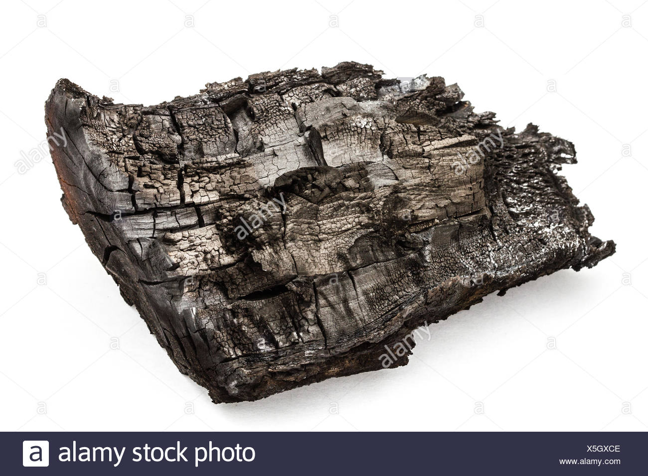 Charred bunt, isolated on a white background - Stock Image
