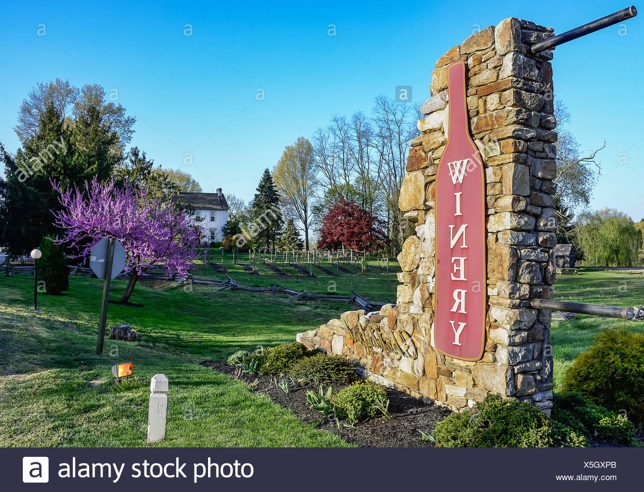 Chadds Ford Winery, Pennsylvania, USA - Stock Image