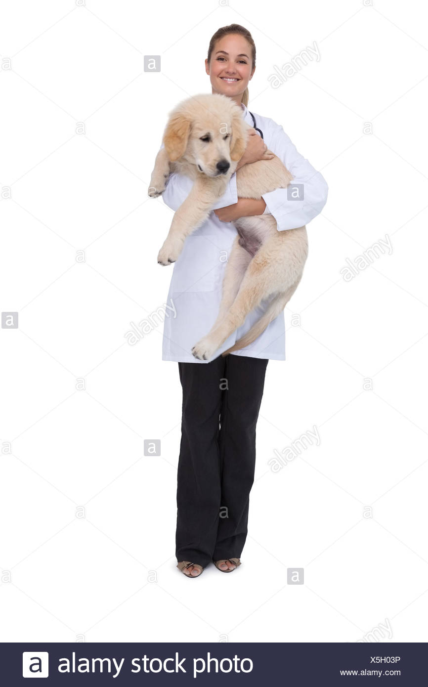 Smiling vet holding a puppy - Stock Image