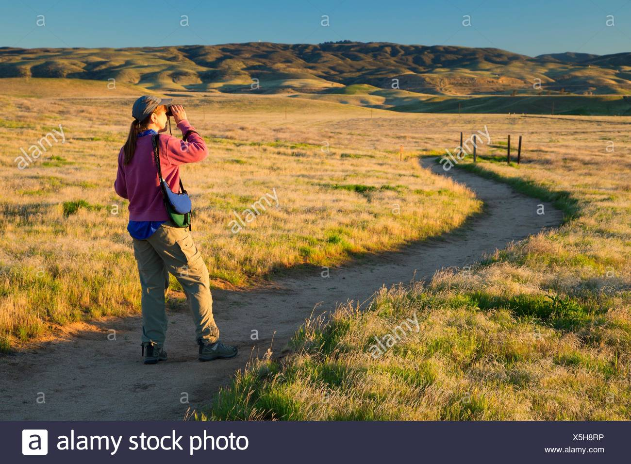 Birder on paved trail, Antelope Valley California Poppy State Reserve, California. - Stock Image