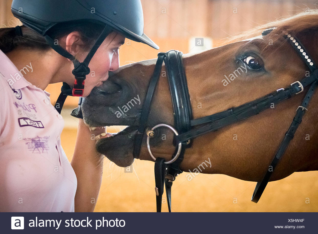Warmblood. Rider Lisa Mueller smoothing with chestnut horse. Germany - Stock Image