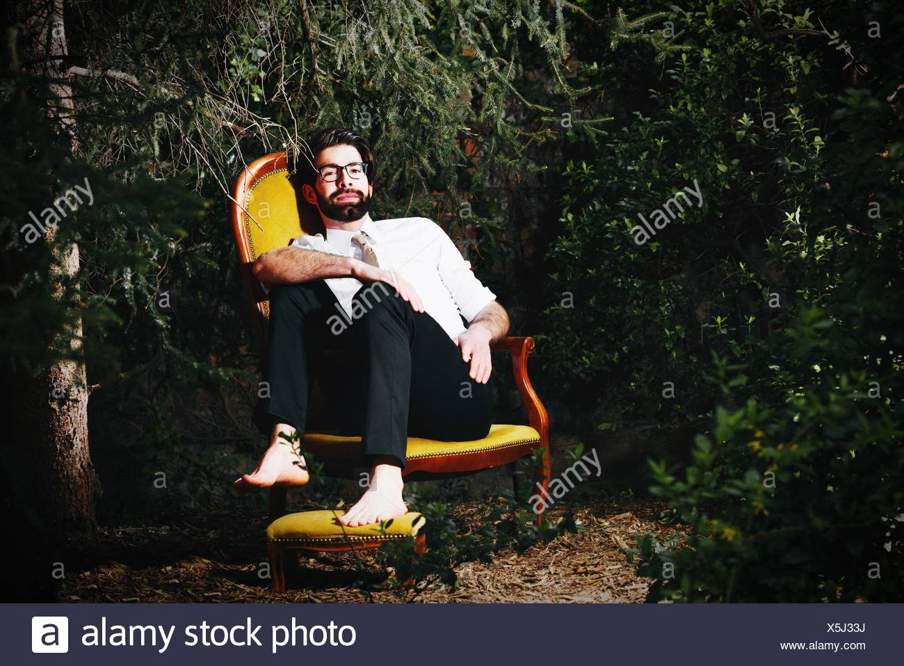 Portrait Of Young Man Sitting On Chair By Trees Stock Photo