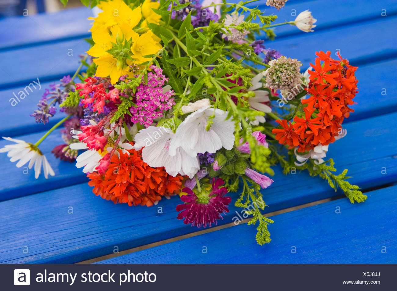 Close-up of fresh flower bouquet on the blue table - Stock Image