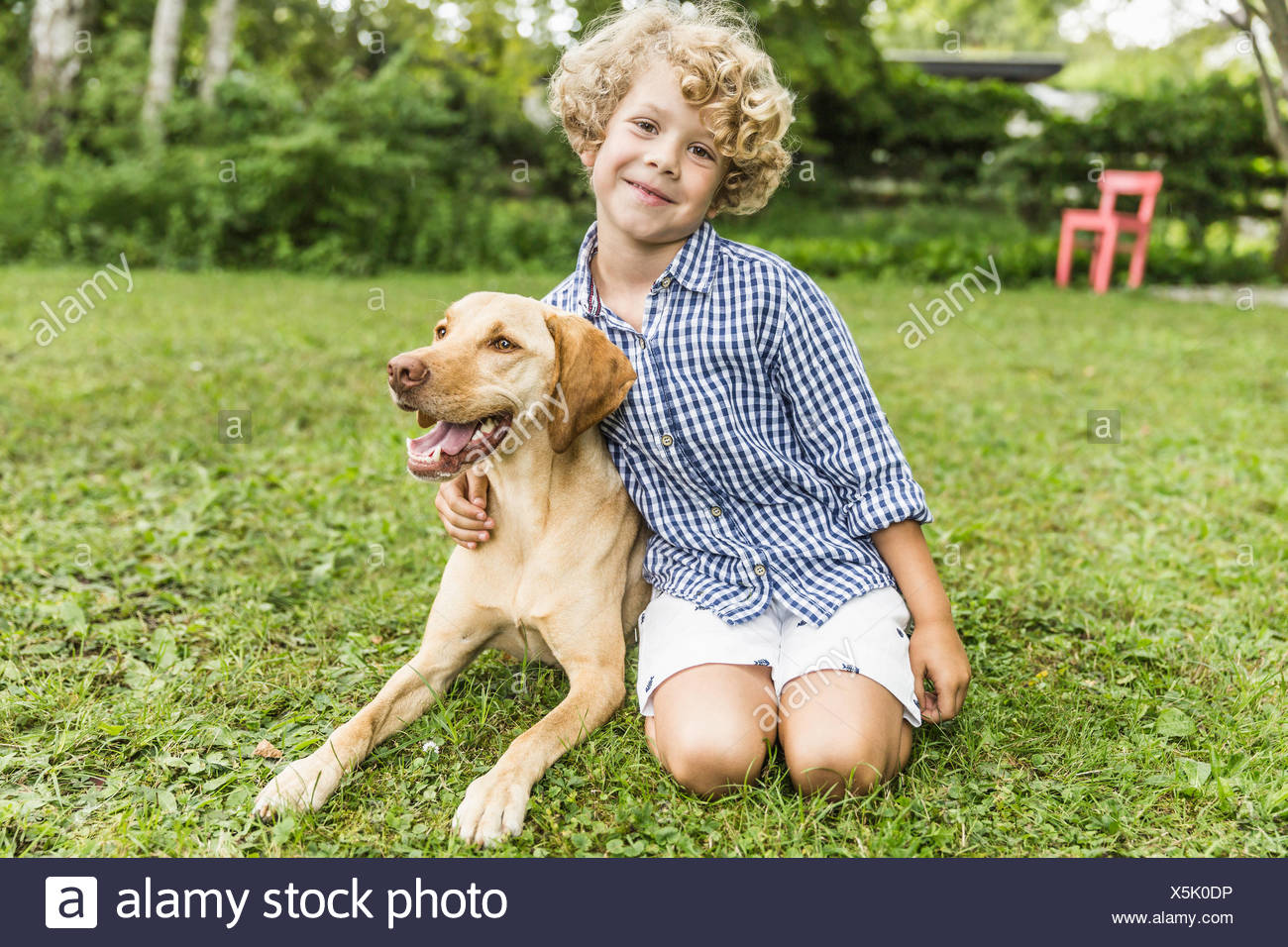 Portrait of boy sitting with dog in garden - Stock Image