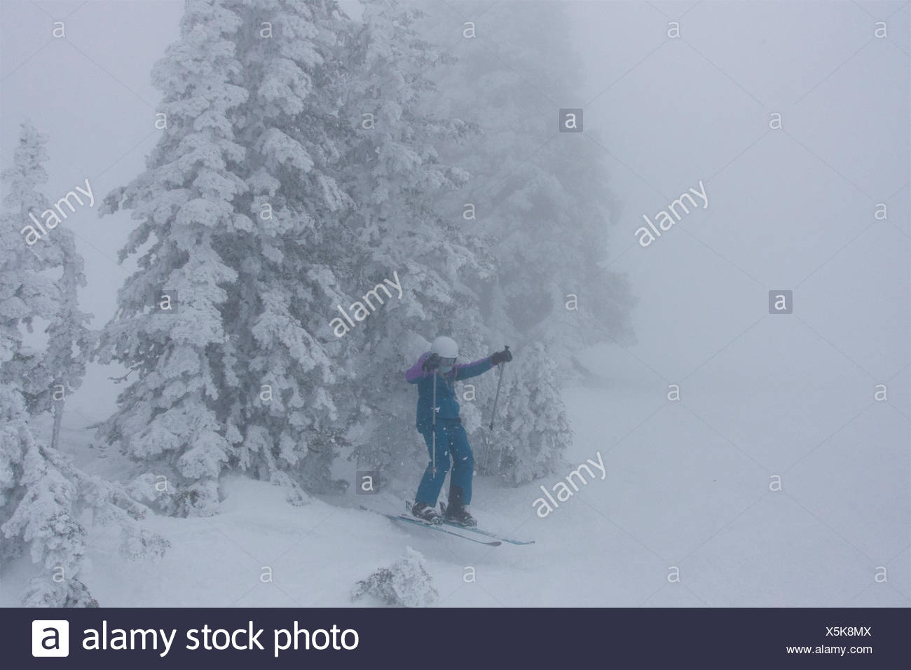 A teen girl skiing in foggy, whiteout conditions jumps through the rime covered conifer trees. - Stock Image