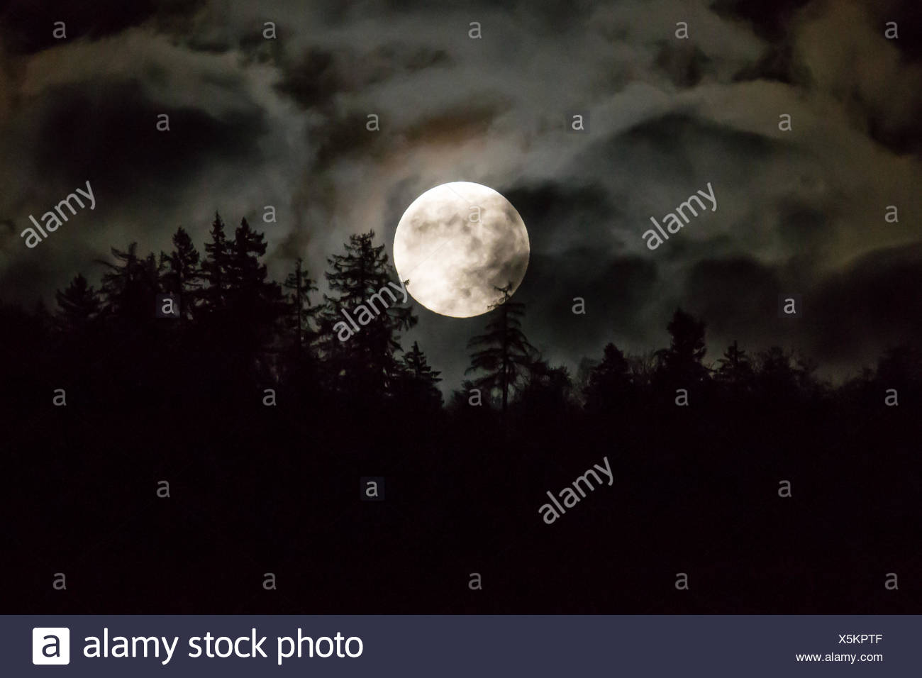 Enveloped moon at night with clouds - Stock Image
