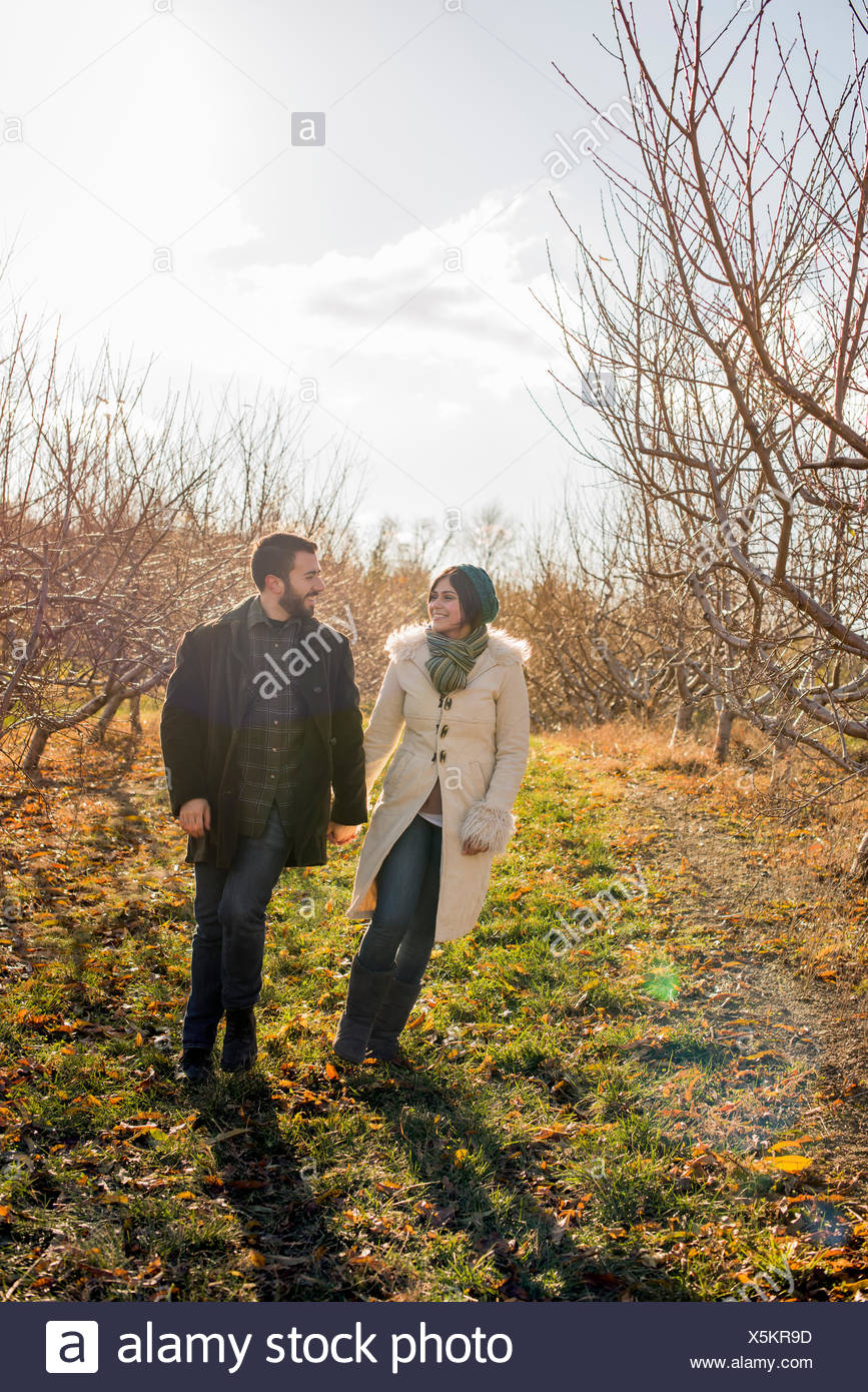 Two people, a couple walking in an orchard in winter. - Stock Image
