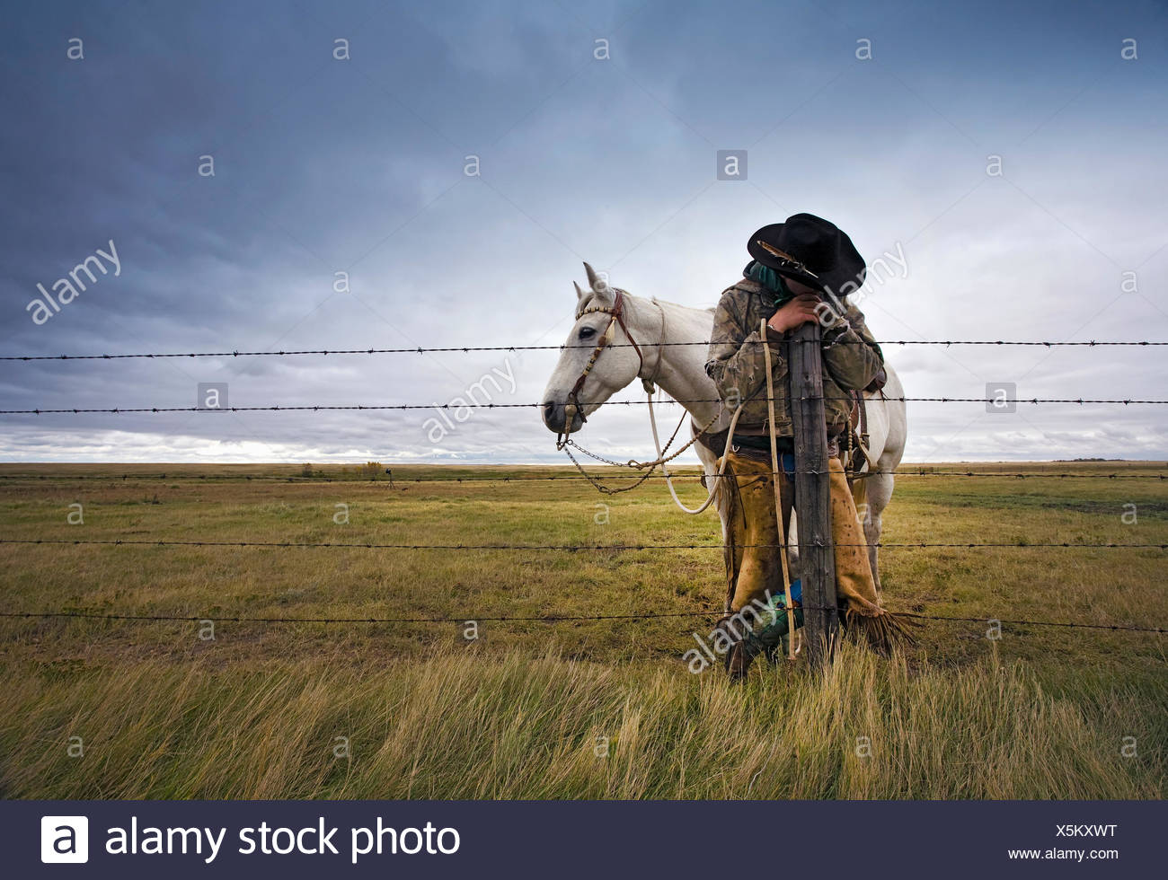 A cowboy standing leaning on a fence post on the range. A grey horse behind him. - Stock Image