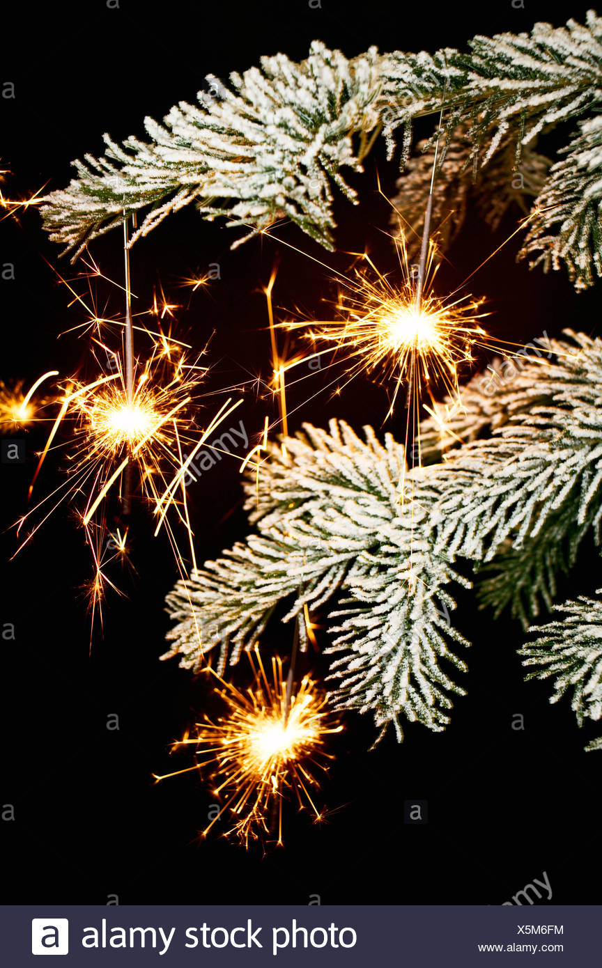 Sparklers in a Christmas tree, Denmark. - Stock Image