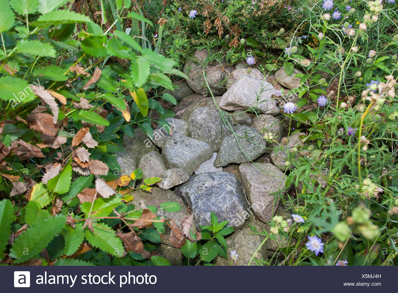 natural stones on a pile of stones, as shelter, habitat for animals in the garden, Germany - Stock Image